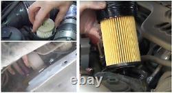 Fuel + Oil Filter For Motorcraft Ford F Series Powerstroke 6.0L Turbo Diesel x8